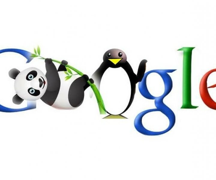 Que hace Google con los nuevos dominios